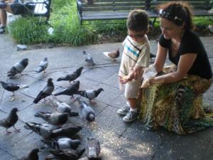 Pigeon Park in San Juan, Pto Rico