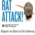 With bed bugs stealing all the headlines lately, rats have been getting an easy ride in the ongoing debate on the most-hated NYC Pest. Now, however, New York officials have...