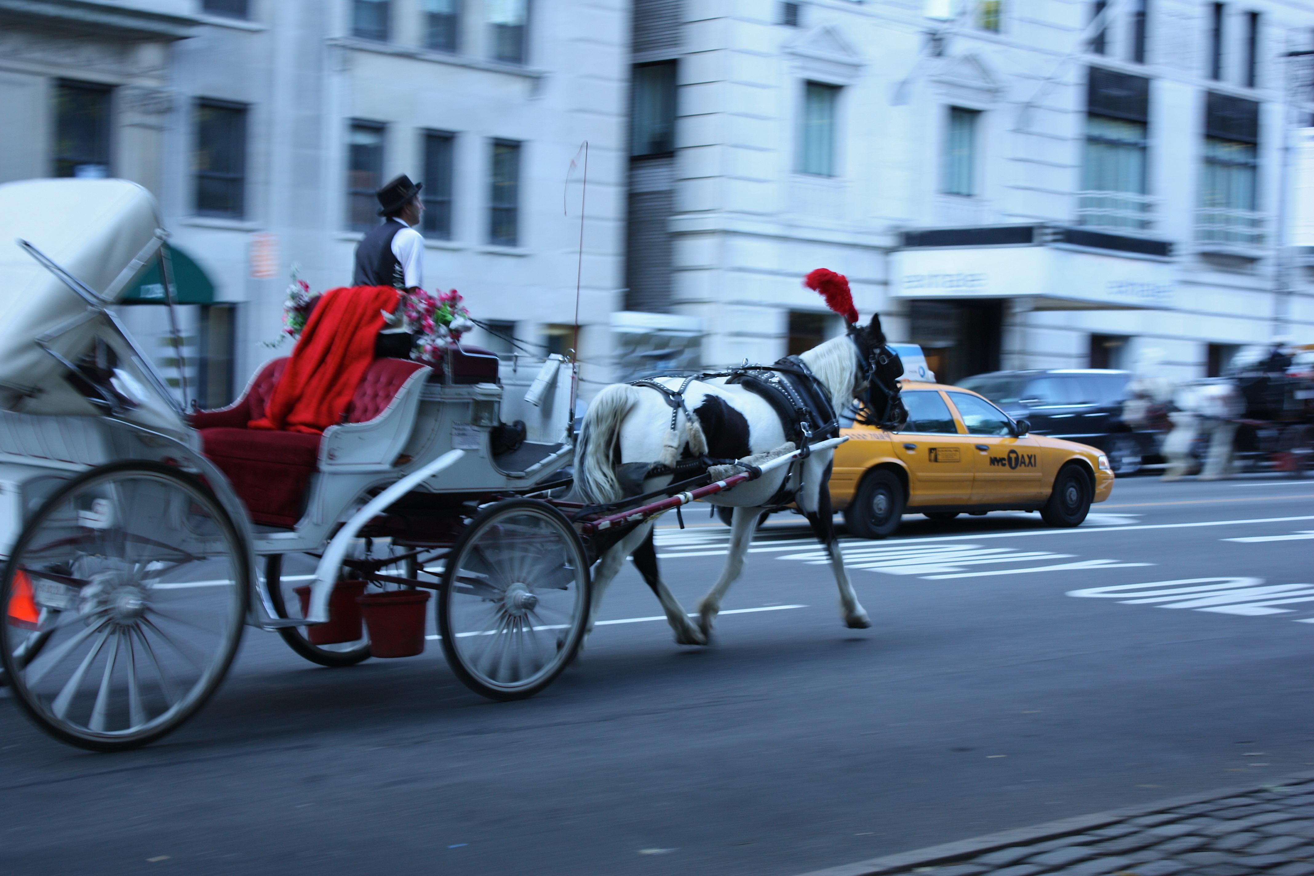Horse and carriage amid 57th Street traffic