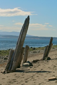 """""""The Ruins"""" - Whidbey Island, WA"""
