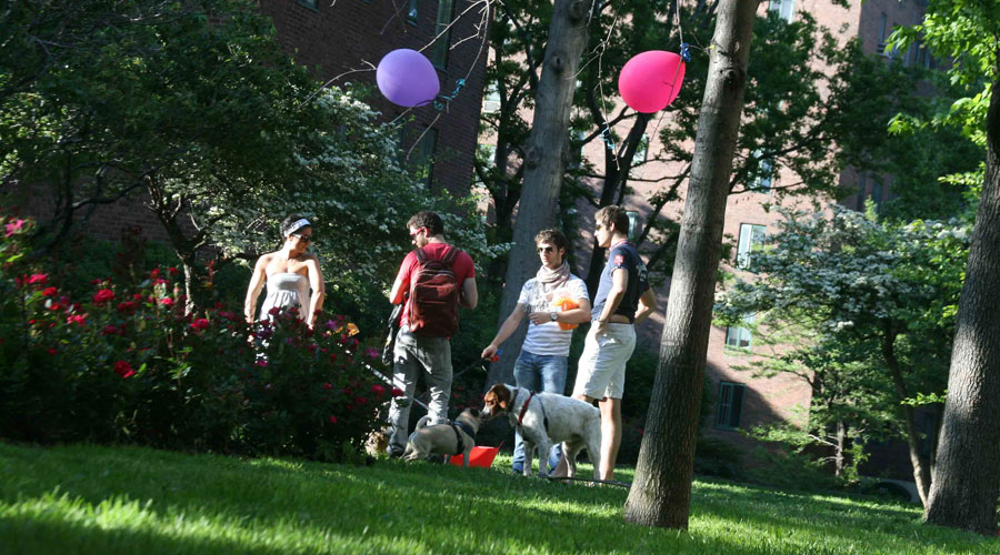 College students celebrating the last days of school in the sun, but older residents are not fond of these dormitory-like parties.