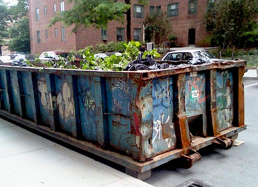 City Trashes Dumpster Project Nyc Economy