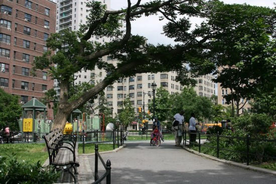 Trees talk on the Grand Concourse