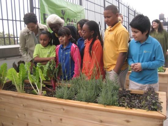 Rooftop garden opens atop charter school
