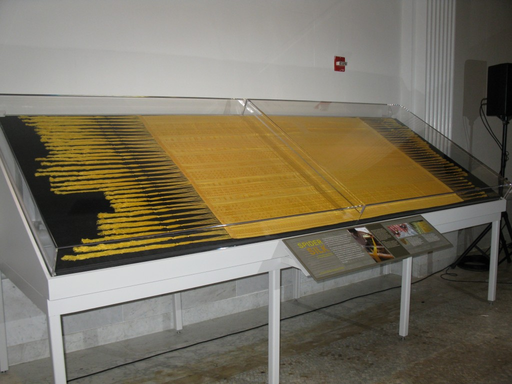 Spider silk textile on display